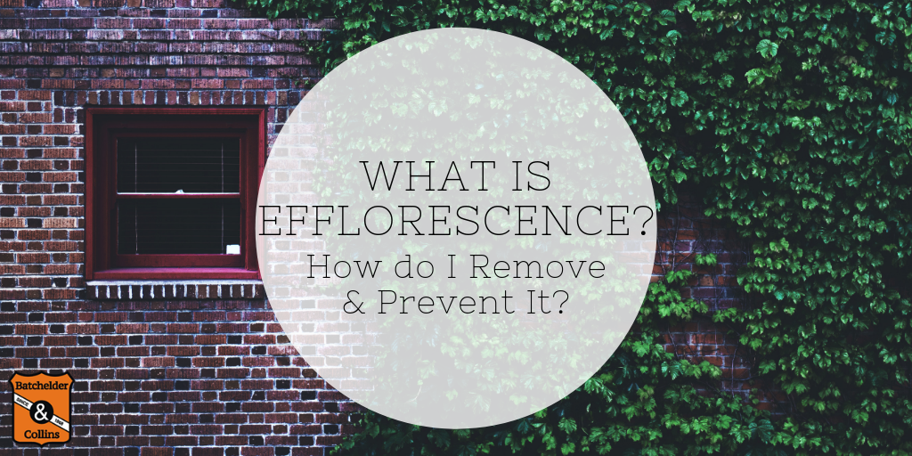 What is Efflorescence and How do I Remove & Prevent It?